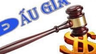 Hành nghề đấu giá tài sản - Luật Trung Kiên
