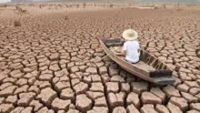 Việc miễn thuế, giảm thuế đất phi nông nghiệp tuân theo những nguyên tắc nào? - Luật Trung Kiên