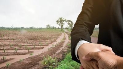 Khi đất không có Sổ đỏ có được bồi thường khi bị thu hồi hay không? - Luật Trung Kiên